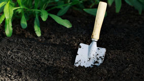 Garden small shovel in vegetable garden Stock Images