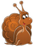 Garden snail Royalty Free Stock Photo