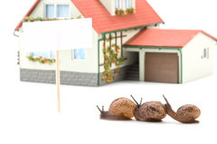 Garden snail and miniature house Royalty Free Stock Images
