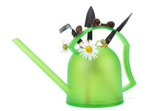 Garden snail and watering can Royalty Free Stock Photo