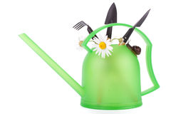 Garden snail and watering can Stock Photo