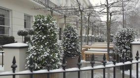 Garden Snow stock video footage