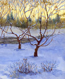 Garden in snow. Watercolor landscape. An orchard was covered with the first snow Stock Photography