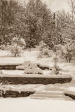 Garden after snowfall, sepia Stock Photos