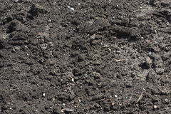 Garden Soil. Black Garden Soil background texture Royalty Free Stock Photos