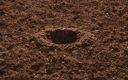 Garden Soil. With dug hole for planting stock image