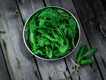 Garden sorrel in a bowl on wooden table. Style rustic. . Garden sorrel in a bowl on wooden table. Style rustic. Selective focus Stock Photo