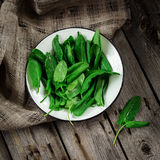 Garden sorrel in a bowl on wooden table. Style rustic. . Stock Photography
