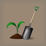 Garden spade and sprout. Vector illustration Stock Image