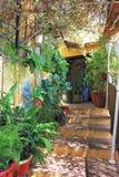 Garden in spain. Garden in Andalusien spain royalty free stock image