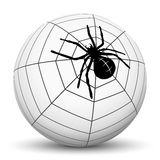 Garden Spider on White Sphere. Abstract Garden Spider with Cobweb on Sphere with White Background - Vector Illustration stock illustration