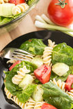 Garden spinach and rotini pasta salad Royalty Free Stock Photography
