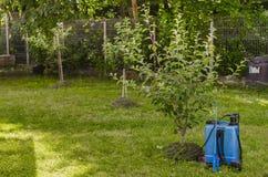 Garden sprayer. Chemical garden spayer prepared for use Stock Photo