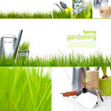 Garden and spring Stock Image