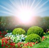 Garden in spring Stock Photography