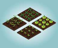 Garden in spring. Isometric icon set. Vector illustration. Flat 3d vector isometric illustration. Concept picture Royalty Free Stock Images
