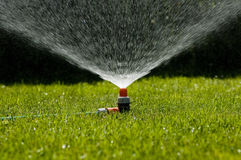 Garden sprinkler. On a sunny summer day during watering the green lawn in garden royalty free stock images