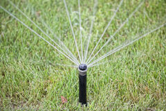 Garden sprinkler in action Royalty Free Stock Photography