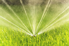 Free Garden Sprinkler Closeup Stock Image - 33570881