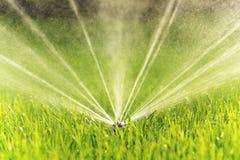 Garden sprinkler closeup Stock Image