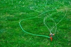 Garden sprinkler connected to long green hose watering grass. Garden sprinkler connected to long green hose pipe watering lush grass stock photos