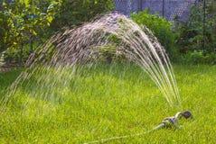 Garden sprinkler grass watering. Garden sprinkler on sunny summer day watering green fresh grass royalty free stock images