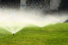 Garden sprinkler on the green lawn Stock Photos