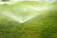 Garden sprinkler on the green lawn Royalty Free Stock Photography
