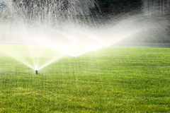 Garden sprinkler on the green lawn Stock Photography