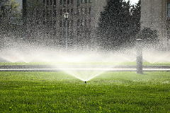 Garden sprinkler on the green lawn Royalty Free Stock Photos