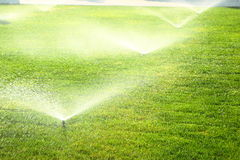 Garden sprinkler on the green lawn. Garden sprinkler on a sunny summer day during watering the green lawn royalty free stock image
