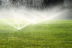 Garden sprinkler on the green lawn Royalty Free Stock Images