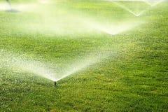 Garden sprinkler on the green lawn Stock Images
