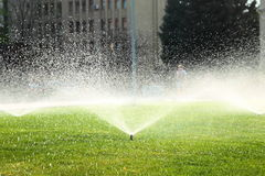 Garden sprinkler on the green lawn Royalty Free Stock Image