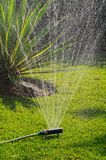 Garden sprinkler. Oscillating garden sprinkler on a Mediterranean lawn, Costa del Sol, Andalucia, Spain, Western Europe royalty free stock photos