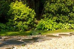 Garden sprinkler Stock Photos