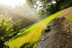 Garden sprinkler Stock Image