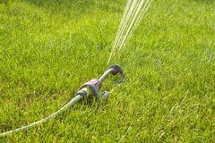 Garden sprinkler on sunny day stock photo