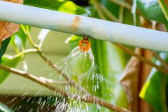 Garden sprinkler water irrigation system royalty free stock images