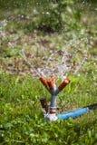 Garden sprinkler water Royalty Free Stock Photo