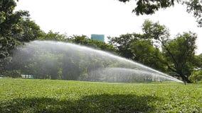 Garden Sprinkler. stock video