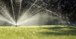 Garden sprinklers on green grass stock photos