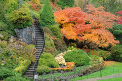 Garden stair Stock Images
