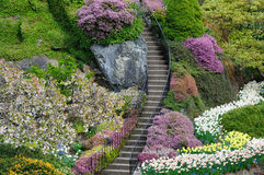 Garden stair Royalty Free Stock Photography