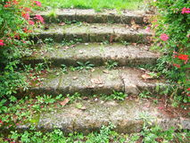 Free Garden Stairs Stock Photos - 11015533