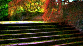 Garden stairs Stock Images