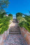 The garden with stairs in the countryside in Cortona Royalty Free Stock Images