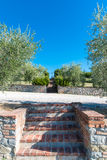 The garden with stairs in the countryside in Cortona Stock Photos