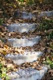 Garden stairs Stock Photos