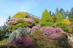 Garden stairway Stock Image